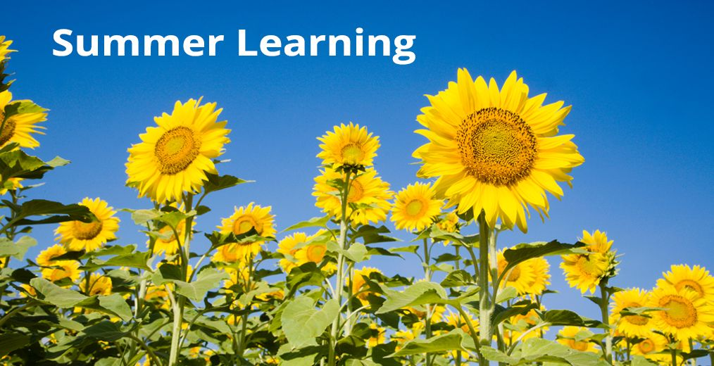 Summer Learning Opportunities!